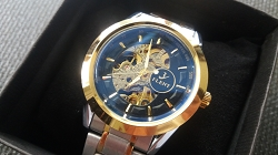 Menï¾'s Automatic Mechanical Wrist Watch Self-Winding Hollow Skeletal Luxury FLENT